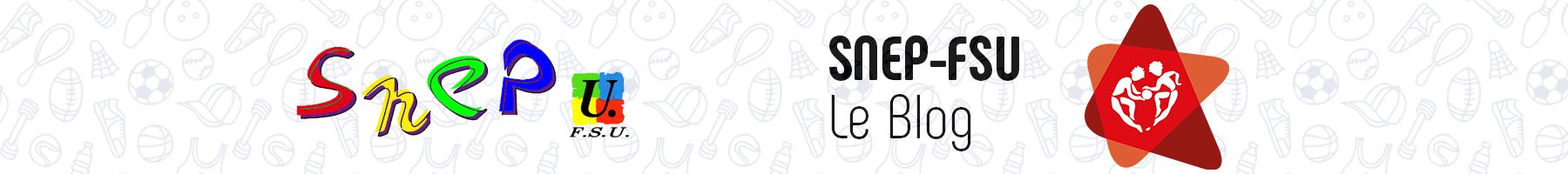 Le blog du SNEP